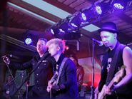 Выступление группы Тараканы, Мандроги, «Белые ночи», 17-20 июня 2015