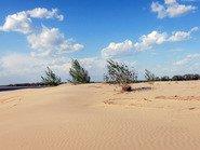 Песчаный берег Волги