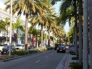 Пальмы Лос-Анджелеса