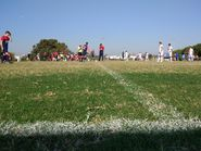 С высоты футбольной лужайки
